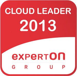 Cloud Leader 2013