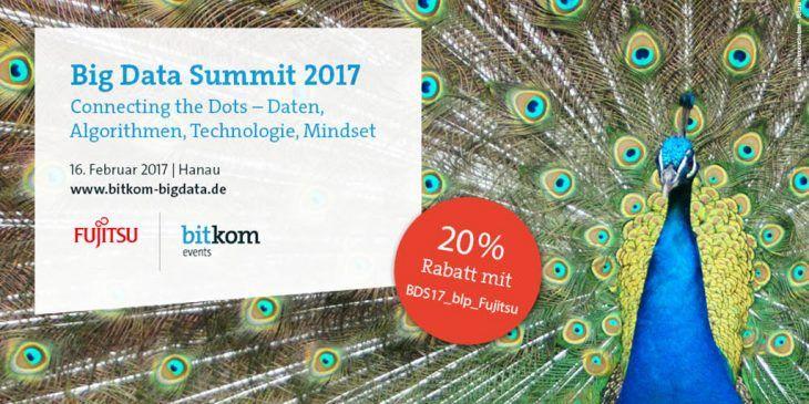 Die richtigen Fische im Datenmeer - Fragen und Antworten auf dem 5. Big Data Summit in Hanau