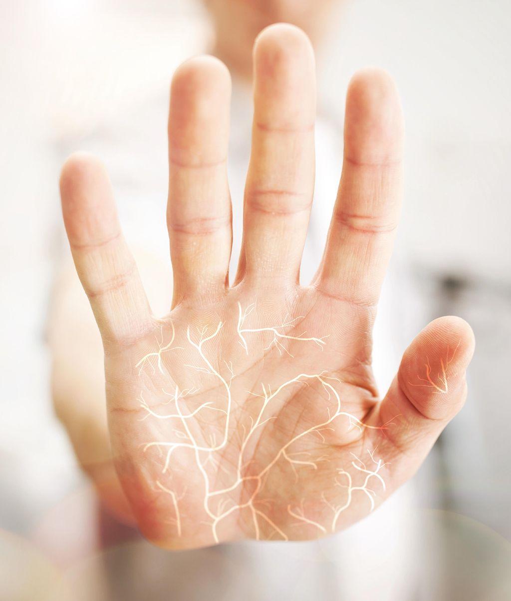 Fujitsu PalmSecure™ ist eine Technologie zur Authentifizierung auf Basis biometrischer Daten