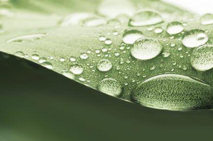 Green by IT für mehr Nachhaltigkeit