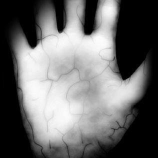 PalmSecure ID Login nutzt innere Biometrie.
